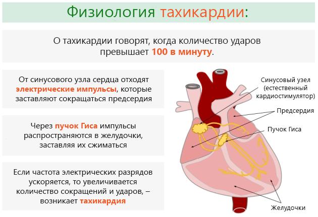 Причины тахикардии: симптомы и лечение