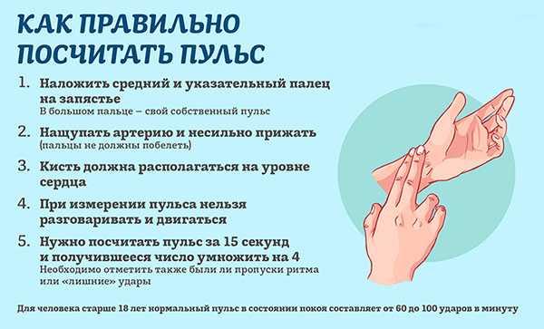 Как повысить пульс: не повышая давления, быстро в домашних условиях, поднять срочно пожилому человеку при брадикардии?