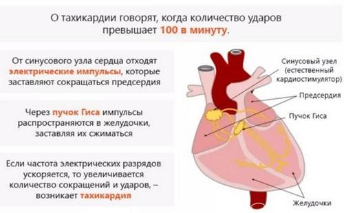 Тахикардия при климаксе симптомы