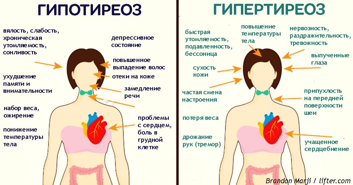 Щитовидная железа может быть причиной похудения